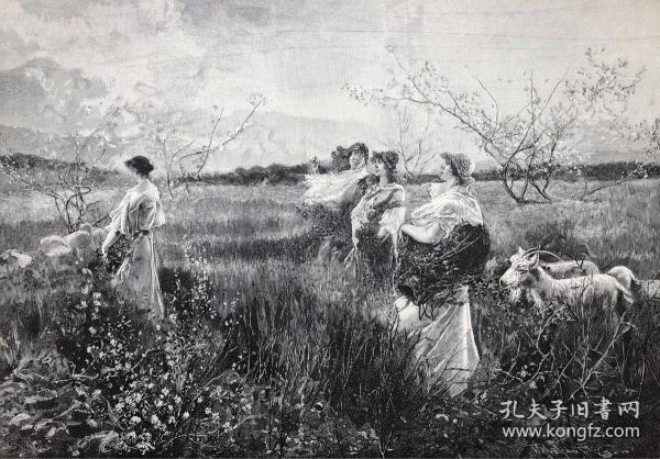 1891年 德国木口木刻版画 《春》41*28厘米