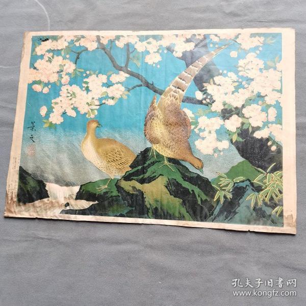 大正六年(1918年)尚美堂画房  景文 锦鸡图 大尺寸一幅