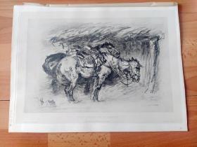 1889年照相凹版《大师素描作品:天马》(Heavenly horse)-- 出自19世纪德国动物马匹与风景画家,杜塞尔多夫美术学院教授,阿道夫·施赖尔(Adolf Schreyer,1828–1899)的炭笔画作品 -- 维也纳艺术画廊出版 -- 版画纸张39*29厘米