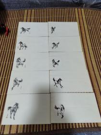 80年代徐悲鸿国画空白信封10枚