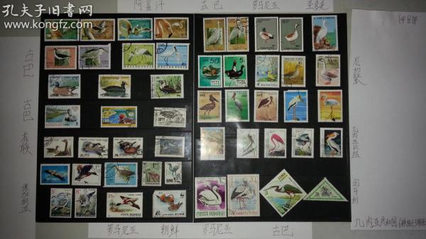 50枚外国水鸟类邮票,票面精美,无重复。请注意图片及说明