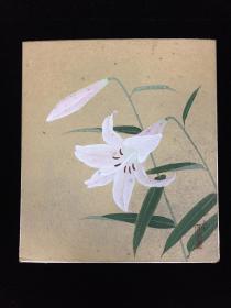 日本著名花鸟画家森公举  花卉 镜心一件(书画回流精品20200108-24)