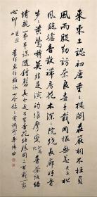 中国书法家协会副主席【赵朴初】书法
